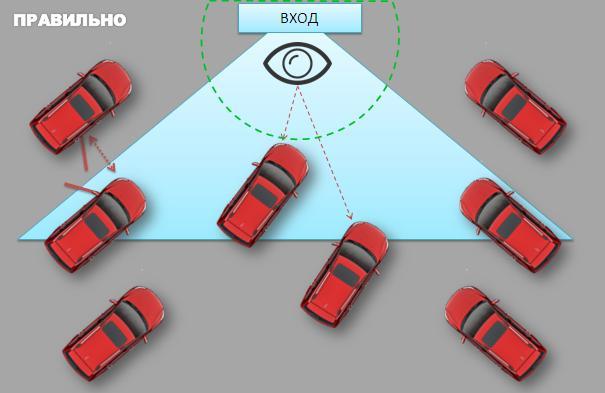 Как разместить автомобили в автосалоне
